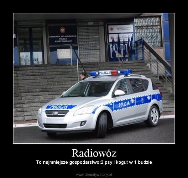 Radiowóz – To najmniejsze gospodarstwo:2 psy i kogut w 1 budzie