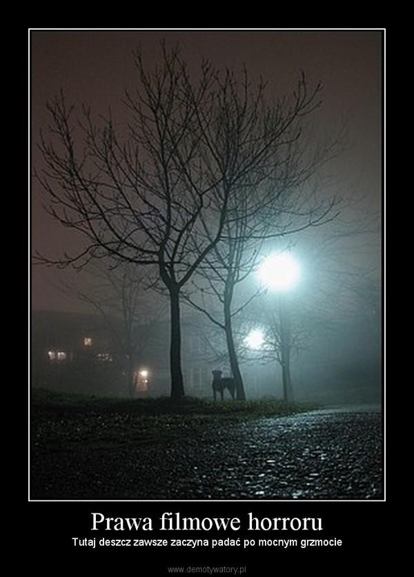 Prawa filmowe horroru – Tutaj deszcz zawsze zaczyna padać po mocnym grzmocie