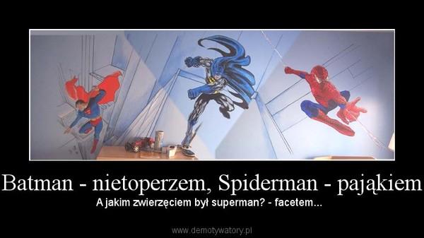 Batman - nietoperzem, Spiderman - pająkiem – A jakim zwierzęciem był superman? - facetem...