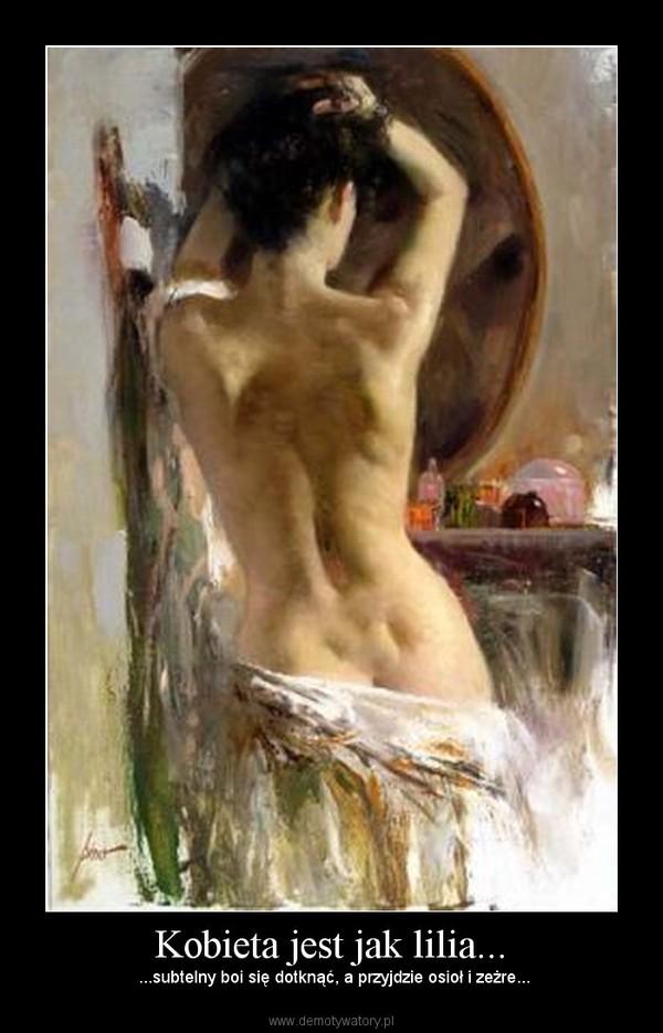 Kobieta jest jak lilia... –  ...subtelny boi się dotknąć, a przyjdzie osioł i zeżre...