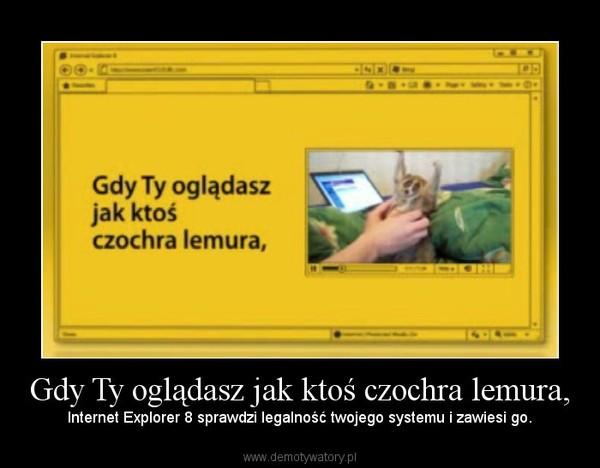 Gdy Ty oglądasz jak ktoś czochra lemura, – Internet Explorer 8 sprawdzi legalność twojego systemu i zawiesi go.