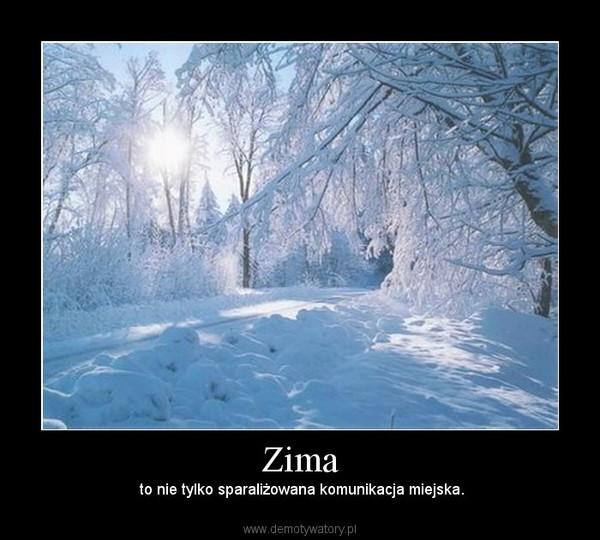 Zima –  to nie tylko sparaliżowana komunikacja miejska.