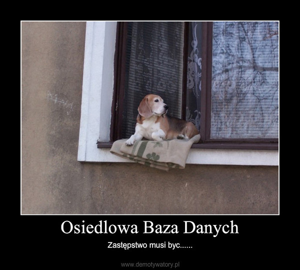 Osiedlowa Baza Danych – Zastępstwo musi byc......