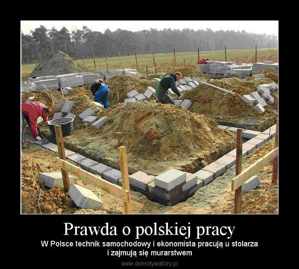 Prawda o polskiej pracy – W Polsce technik samochodowy i ekonomista pracują u stolarzai zajmują się murarstwem