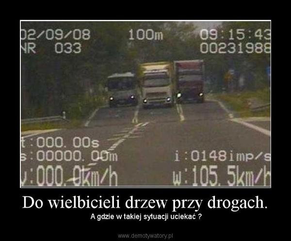 Do wielbicieli drzew przy drogach. – A gdzie w takiej sytuacji uciekać ?
