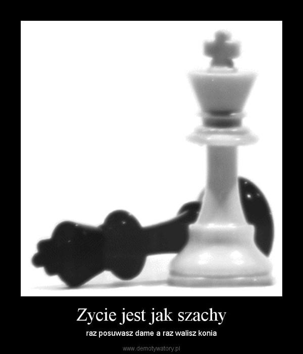 Zycie jest jak szachy – raz posuwasz dame a raz walisz konia