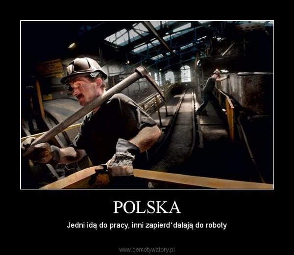 POLSKA – Jedni idą do pracy, inni zapierd*dalają do roboty