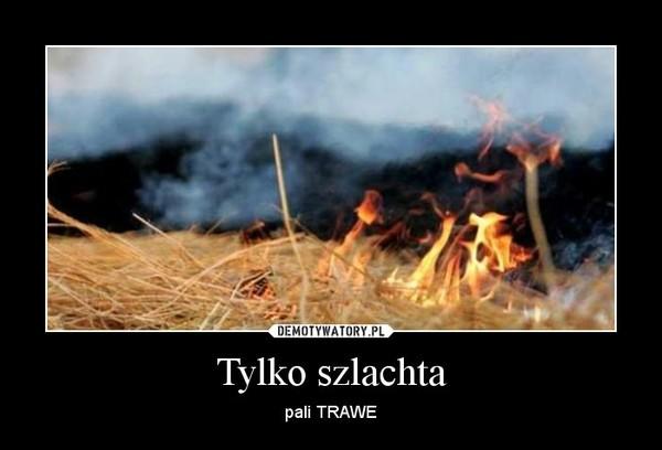 Tylko szlachta – pali TRAWE