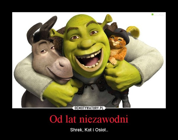 Od lat niezawodni – Shrek, Kot i Osioł..