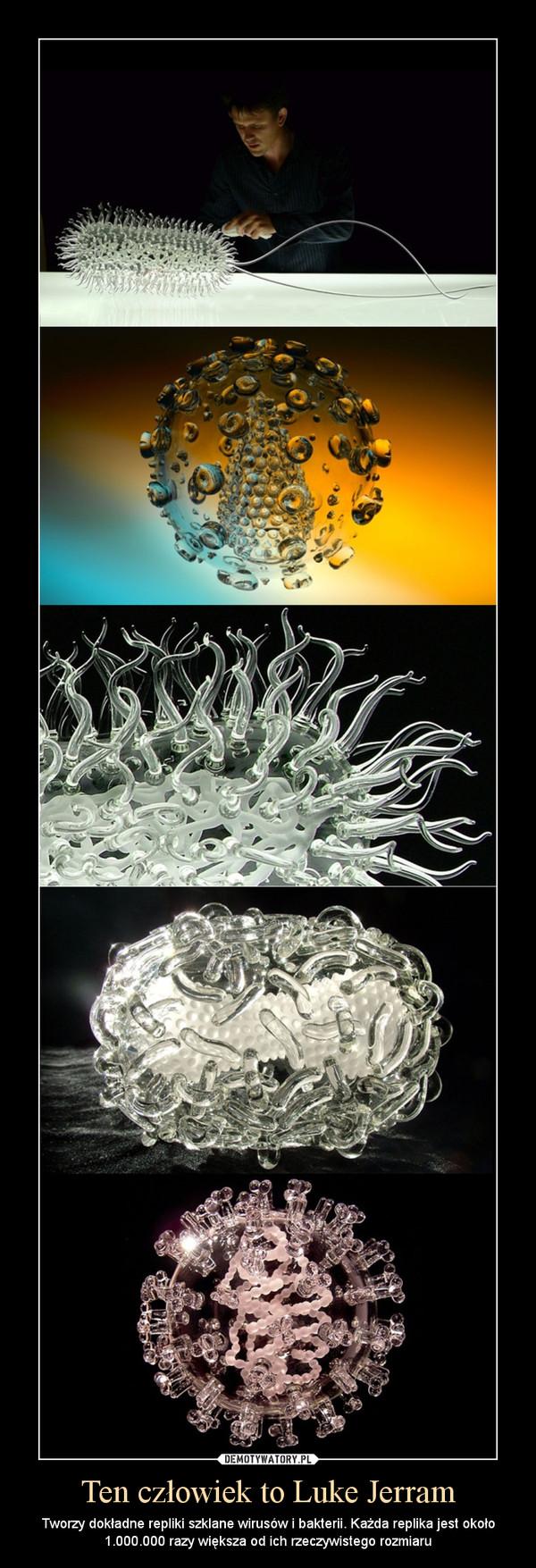 Ten człowiek to Luke Jerram – Tworzy dokładne repliki szklane wirusów i bakterii. Każda replika jest około 1.000.000 razy większa od ich rzeczywistego rozmiaru