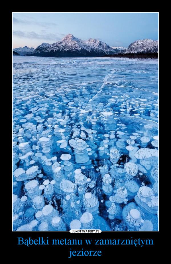 Bąbelki metanu w zamarzniętym jeziorze –