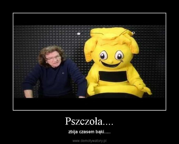 Pszczoła.... – zbija czasem bąki.....