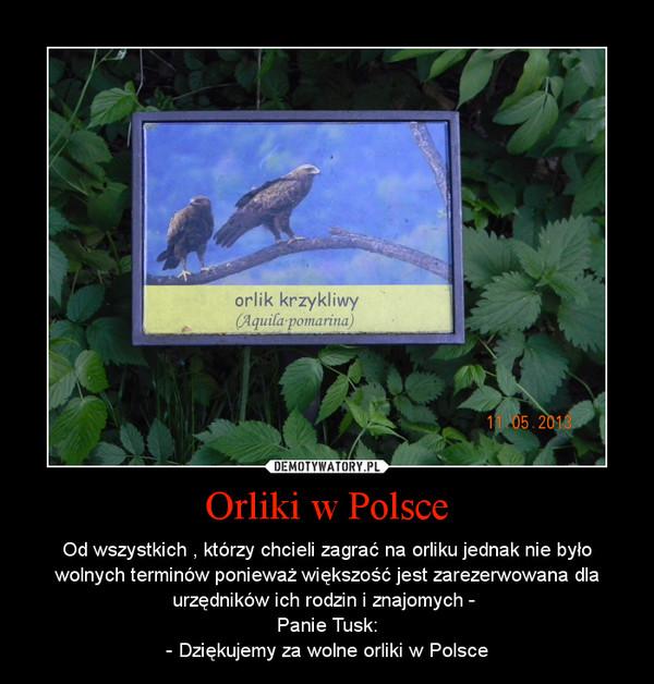 Orliki w Polsce – Od wszystkich , którzy chcieli zagrać na orliku jednak nie było wolnych terminów ponieważ większość jest zarezerwowana dla urzędników ich rodzin i znajomych - \nPanie Tusk:\n- Dziękujemy za wolne orliki w Polsce