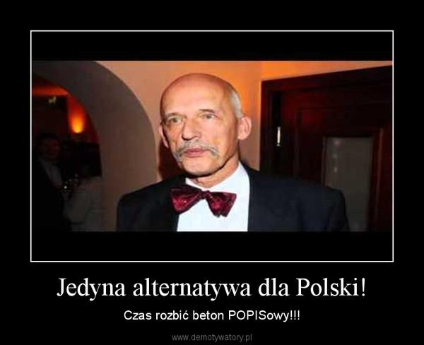 Jedyna alternatywa dla Polski! – Czas rozbić beton POPISowy!!!