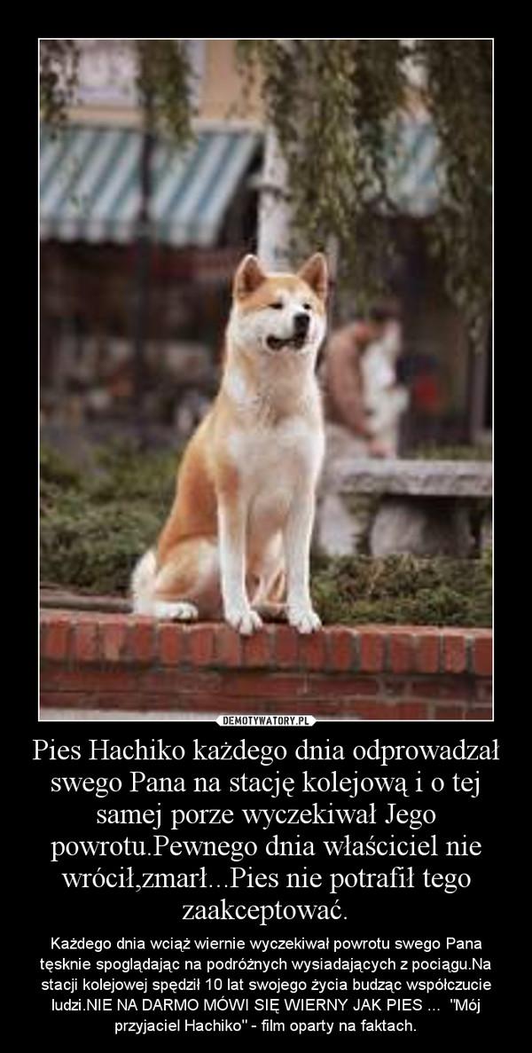 """Pies Hachiko każdego dnia odprowadzał swego Pana na stację kolejową i o tej samej porze wyczekiwał Jego powrotu.Pewnego dnia właściciel nie wrócił,zmarł...Pies nie potrafił tego zaakceptować. – Każdego dnia wciąż wiernie wyczekiwał powrotu swego Pana tęsknie spoglądając na podróżnych wysiadających z pociągu.Na stacji kolejowej spędził 10 lat swojego życia budząc współczucie ludzi.NIE NA DARMO MÓWI SIĘ WIERNY JAK PIES ...  """"Mój przyjaciel Hachiko"""" - film oparty na faktach."""