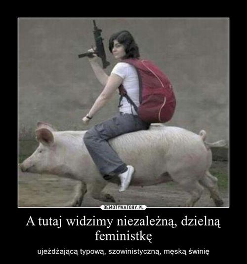 A tutaj widzimy niezależną, dzielną feministkę