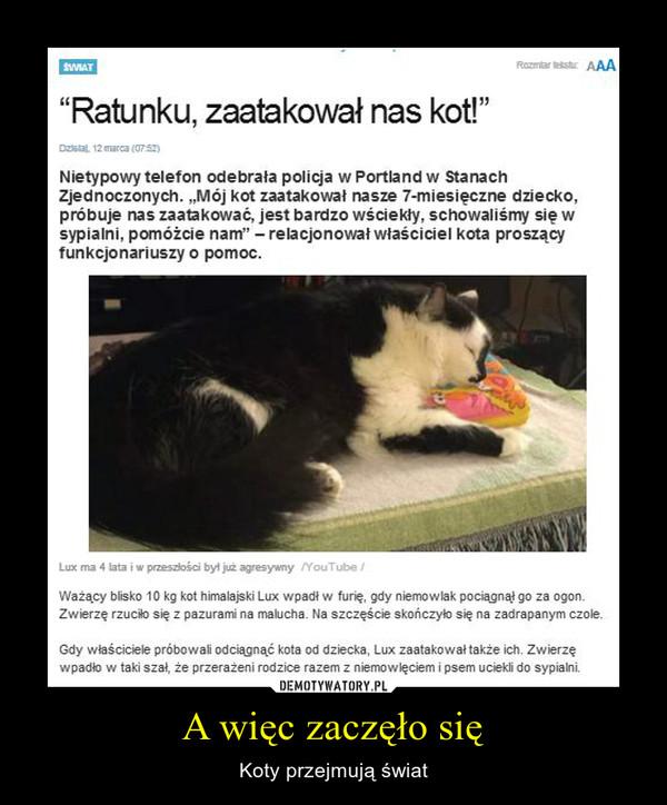A więc zaczęło się – Koty przejmują świat