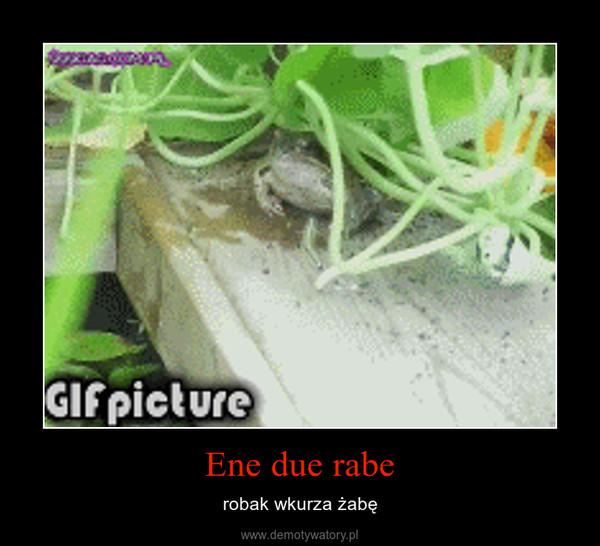 Ene due rabe – robak wkurza żabę