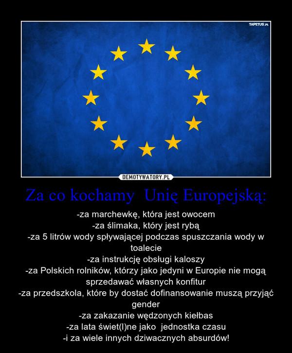Za co kochamy  Unię Europejską: – -za marchewkę, która jest owocem-za ślimaka, który jest rybą-za 5 litrów wody spływającej podczas spuszczania wody w toalecie-za instrukcję obsługi kaloszy-za Polskich rolników, którzy jako jedyni w Europie nie mogą sprzedawać własnych konfitur-za przedszkola, które by dostać dofinansowanie muszą przyjąć gender-za zakazanie wędzonych kiełbas-za lata świet(l)ne jako  jednostka czasu-i za wiele innych dziwacznych absurdów!