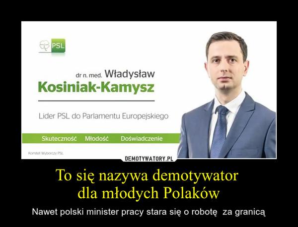 To się nazywa demotywator dla młodych Polaków – Nawet polski minister pracy stara się o robotę  za granicą