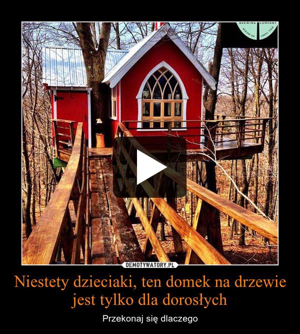 Niestety dzieciaki, ten domek na drzewie jest tylko dla dorosłych – Przekonaj się dlaczego
