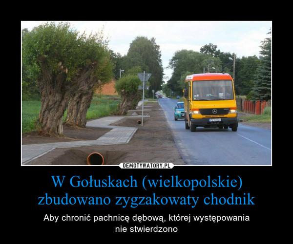 W Gołuskach (wielkopolskie) zbudowano zygzakowaty chodnik – Aby chronić pachnicę dębową, której występowanianie stwierdzono