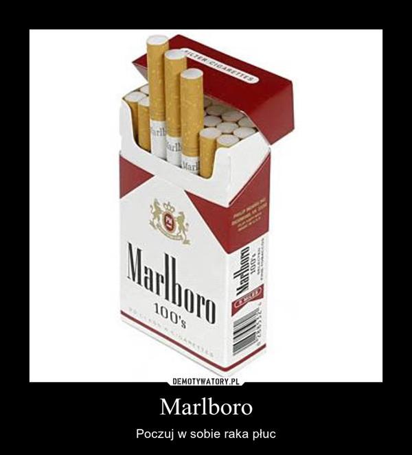 Marlboro – Poczuj w sobie raka płuc