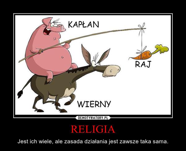 RELIGIA – Jest ich wiele, ale zasada działania jest zawsze taka sama.