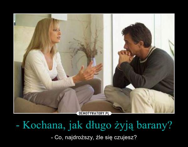 - Kochana, jak długo żyją barany? – - Co, najdroższy, źle się czujesz?