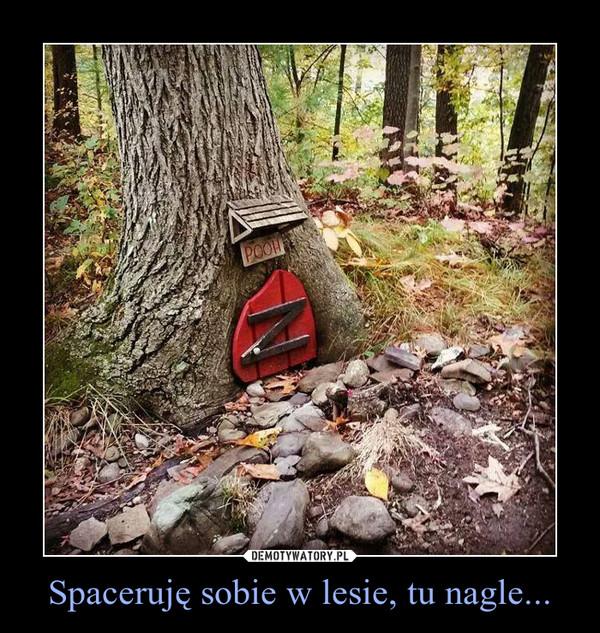 Spaceruję sobie w lesie, tu nagle... –