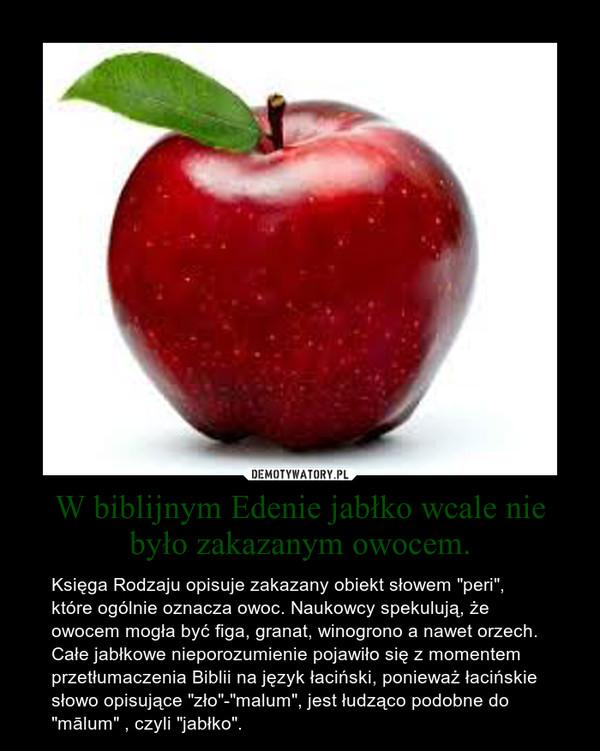 """W biblijnym Edenie jabłko wcale nie było zakazanym owocem. – Księga Rodzaju opisuje zakazany obiekt słowem """"peri"""", które ogólnie oznacza owoc. Naukowcy spekulują, że owocem mogła być figa, granat, winogrono a nawet orzech. Całe jabłkowe nieporozumienie pojawiło się z momentem przetłumaczenia Biblii na język łaciński, ponieważ łacińskie słowo opisujące """"zło""""-""""malum"""", jest łudząco podobne do """"mālum"""" , czyli """"jabłko""""."""