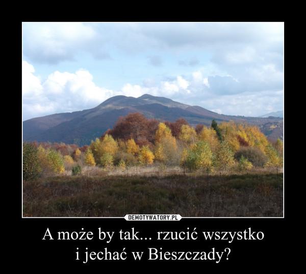 A może by tak... rzucić wszystkoi jechać w Bieszczady? –