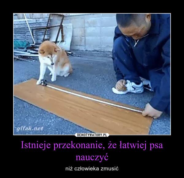 Istnieje przekonanie, że łatwiej psa nauczyć – niż człowieka zmusić