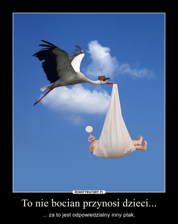 To nie bocian przynosi dzieci... – ... za to jest odpowiedzialny inny ptak.