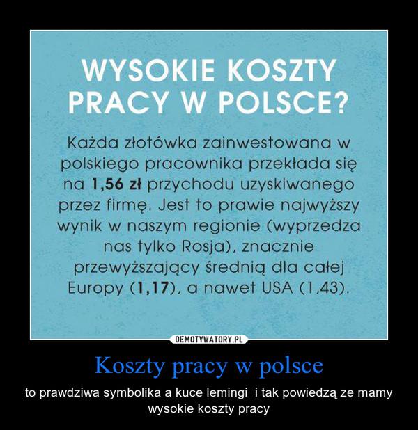 Koszty pracy w polsce – to prawdziwa symbolika a kuce lemingi  i tak powiedzą ze mamy wysokie koszty pracy