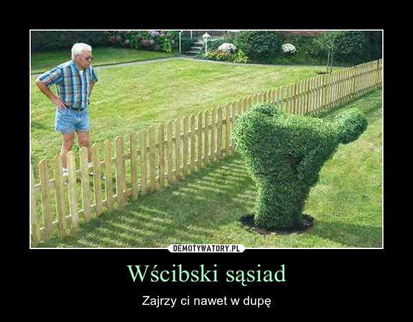 Wścibski sąsiad – Zajrzy ci nawet w dupę