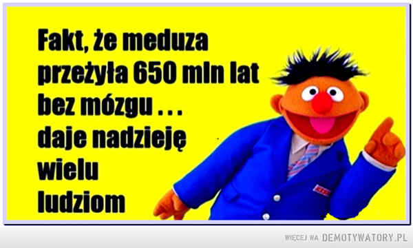 Meduza –