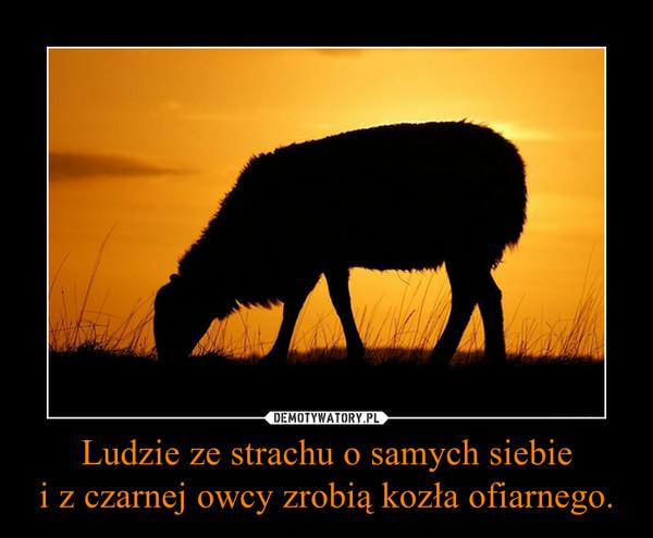 Ludzie ze strachu o samych siebiei z czarnej owcy zrobią kozła ofiarnego. –