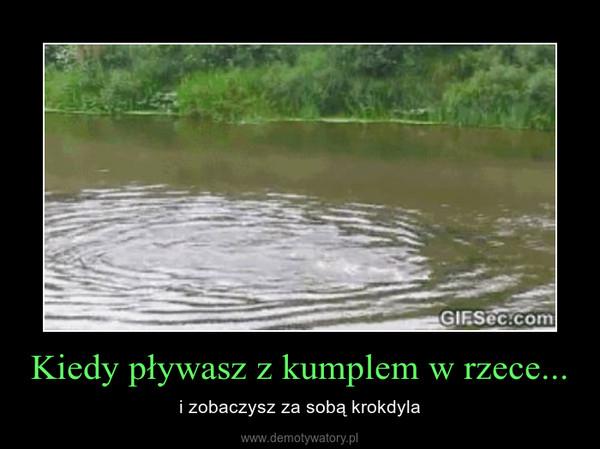 Kiedy pływasz z kumplem w rzece... – i zobaczysz za sobą krokdyla