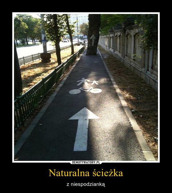 Naturalna ścieżka – z niespodzianką