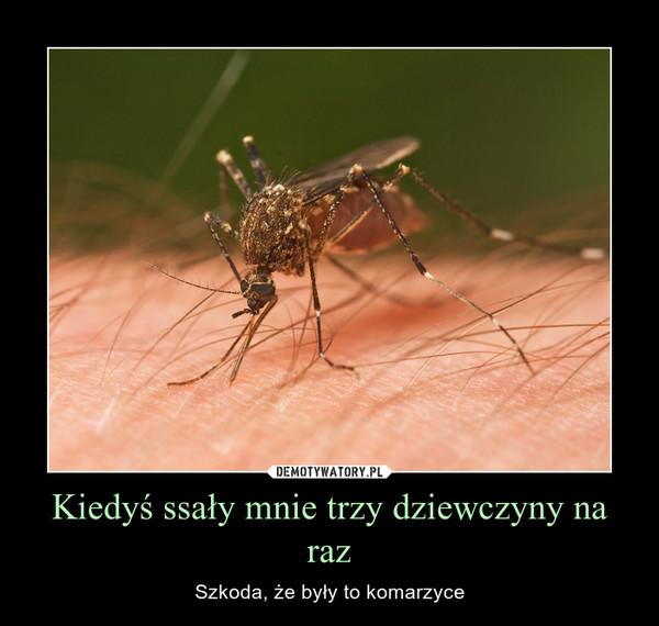 Kiedyś ssały mnie trzy dziewczyny na raz – Szkoda, że były to komarzyce