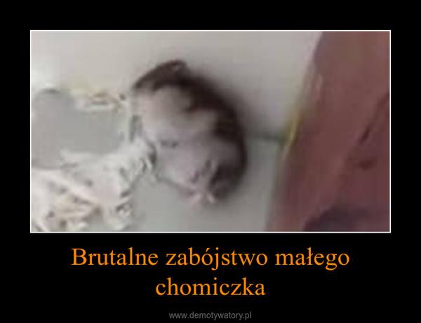 Brutalne zabójstwo małego chomiczka –