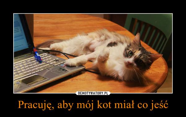 Pracuję, aby mój kot miał co jeść –