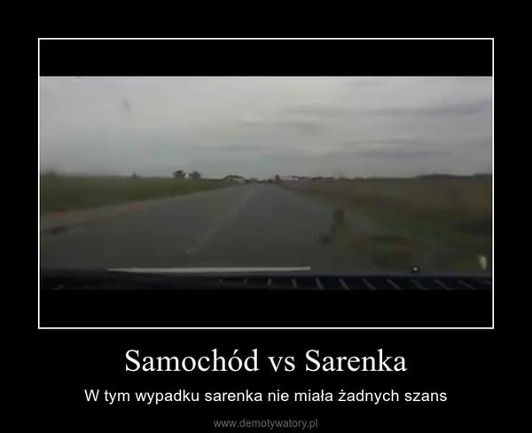 Samochód vs Sarenka – W tym wypadku sarenka nie miała żadnych szans