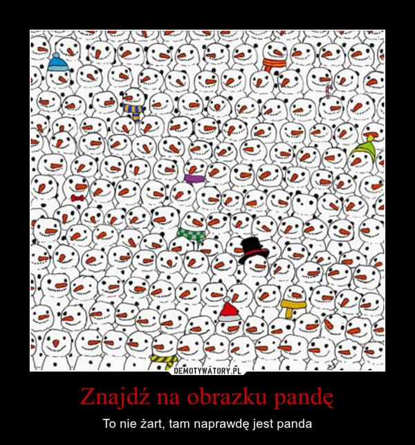 Znajdź na obrazku pandę – To nie żart, tam naprawdę jest panda
