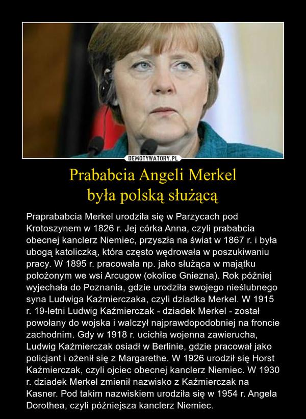 Prababcia Angeli Merkelbyła polską służącą – Praprababcia Merkel urodziła się w Parzycach pod Krotoszynem w 1826 r. Jej córka Anna, czyli prababcia obecnej kanclerz Niemiec, przyszła na świat w 1867 r. i była ubogą katoliczką, która często wędrowała w poszukiwaniu pracy. W 1895 r. pracowała np. jako służąca w majątku położonym we wsi Arcugow (okolice Gniezna). Rok później wyjechała do Poznania, gdzie urodziła swojego nieślubnego syna Ludwiga Kaźmierczaka, czyli dziadka Merkel. W 1915 r. 19-letni Ludwig Kaźmierczak - dziadek Merkel - został powołany do wojska i walczył najprawdopodobniej na froncie zachodnim. Gdy w 1918 r. ucichła wojenna zawierucha, Ludwig Kaźmierczak osiadł w Berlinie, gdzie pracował jako policjant i ożenił się z Margarethe. W 1926 urodził się Horst Kaźmierczak, czyli ojciec obecnej kanclerz Niemiec. W 1930 r. dziadek Merkel zmienił nazwisko z Kaźmierczak na Kasner. Pod takim nazwiskiem urodziła się w 1954 r. Angela Dorothea, czyli późniejsza kanclerz Niemiec.