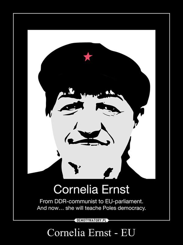 Cornelia Ernst - EU –