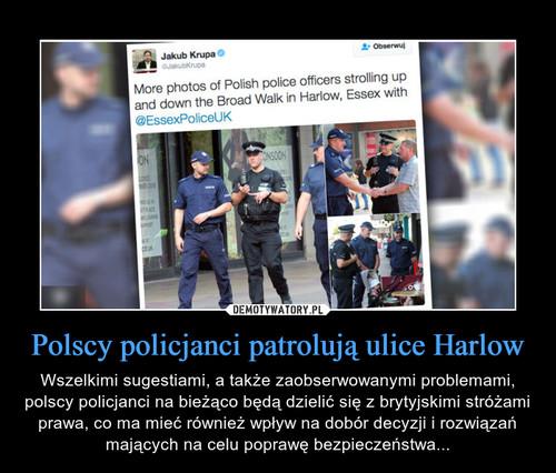 Polscy policjanci patrolują ulice Harlow