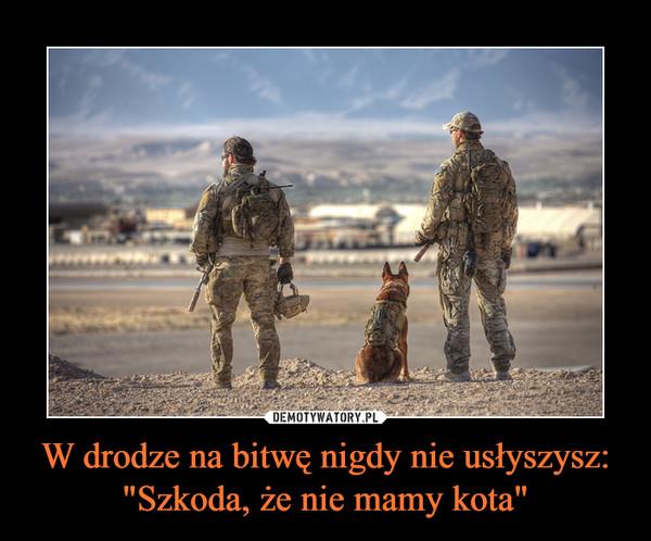 """W drodze na bitwę nigdy nie usłyszysz:""""Szkoda, że nie mamy kota"""" –"""