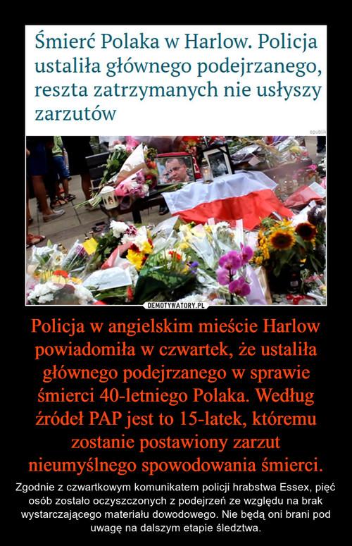 Policja w angielskim mieście Harlow powiadomiła w czwartek, że ustaliła głównego podejrzanego w sprawie śmierci 40-letniego Polaka. Według źródeł PAP jest to 15-latek, któremu zostanie postawiony zarzut nieumyślnego spowodowania śmierci.